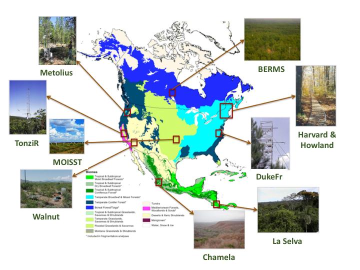 Biomes Of North America Map.Airmoss L1 S 0 Polarimetric Data From Airmoss P Band Sar Walnut