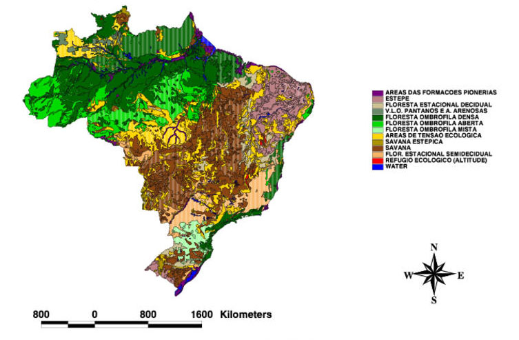 LBAECO LC Soil Vegetation And Land Cover Maps For Brazil And - Vegetation map of north america