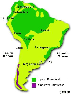 map of rain forests in South America